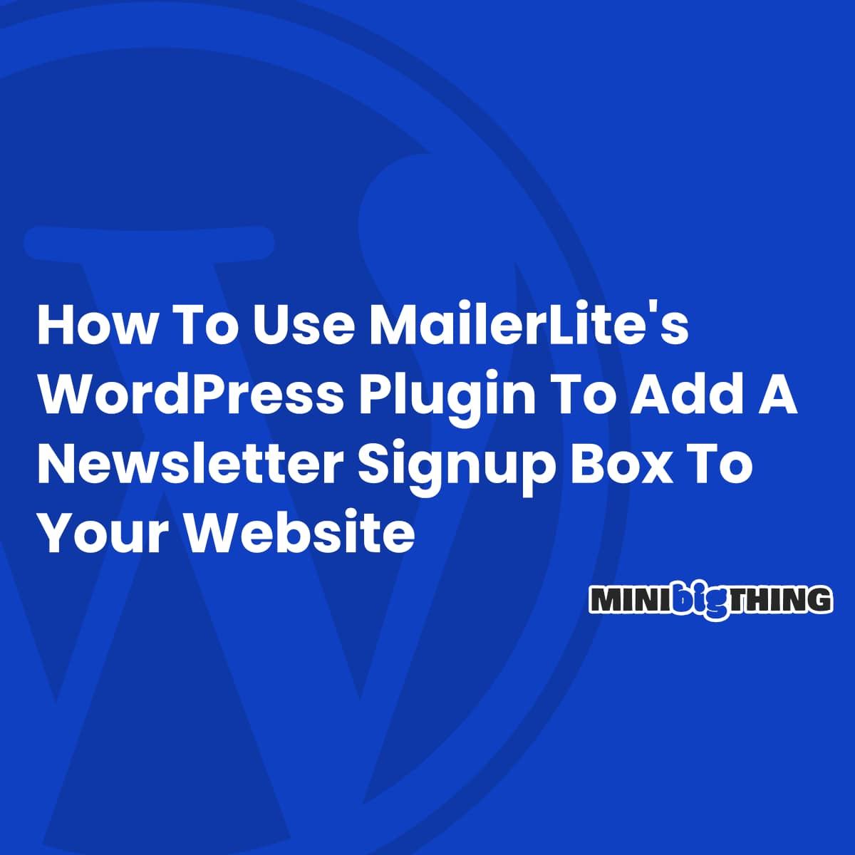 How To Use Mailerlite's Wordpress Plugin To Add A Newsletter Signup Box To Your Website