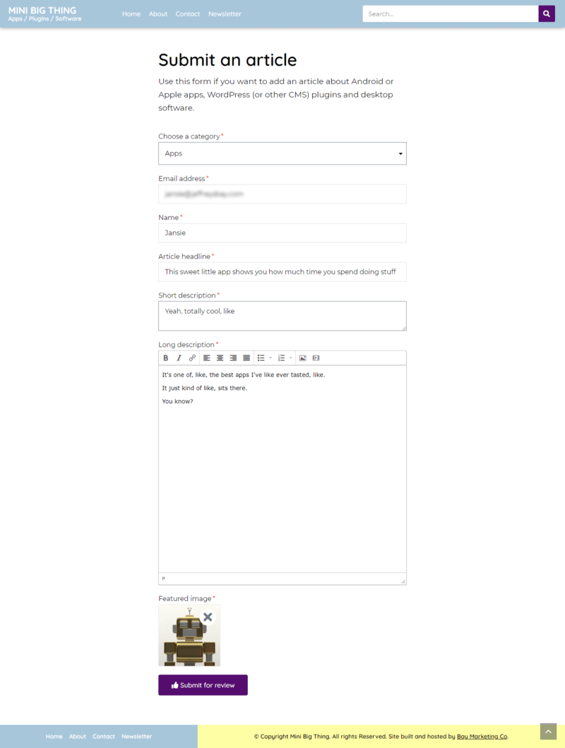 A Screenshot Showing The Form Input Before Submission