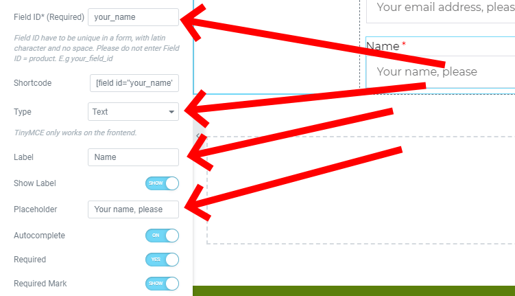 Add Your Name To The Field Id, Set The Type To Text, Add Name To Label, Change The Placeholder And Leave Autocomplete, Required And Required Mark On