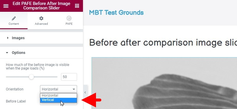 In The Left Hand Sidebar, Under The Options Tab For The Slider, Click On The Orientation Dropdown And Choose Vertical
